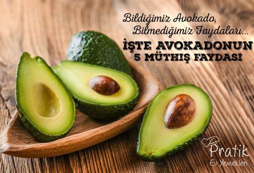 Bildiğimiz Avokado, Bilmediğimiz Faydaları… İşte Avokadonun 5 Müthiş Faydası!