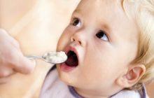 Bebeklerin Gelişimine Destek Olan Gıdalar