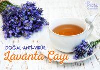 Doğal Anti-Virüs: Lavanta Çayı